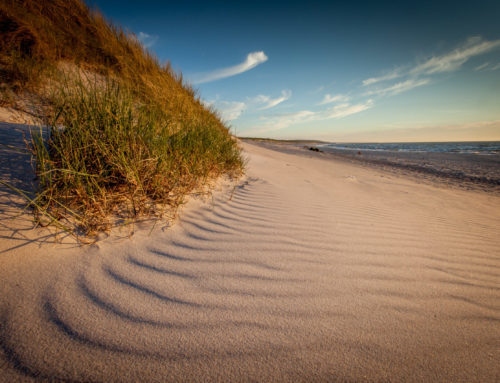The Baltic Coast